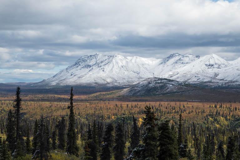 Alaska-N-528