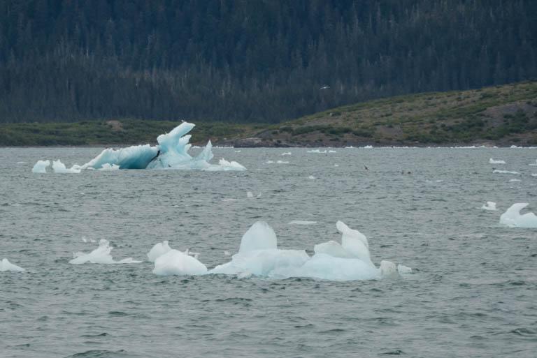 Alaska-N-605