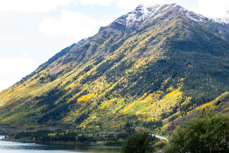 Alaska-N-1121