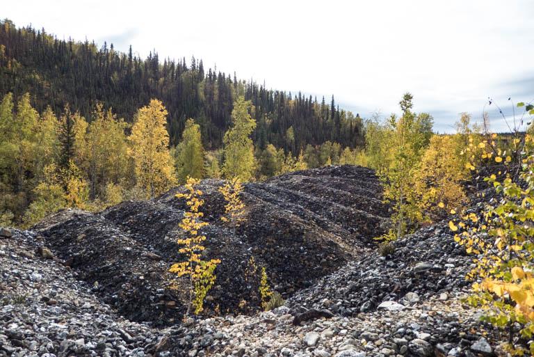 Alaska-N-987
